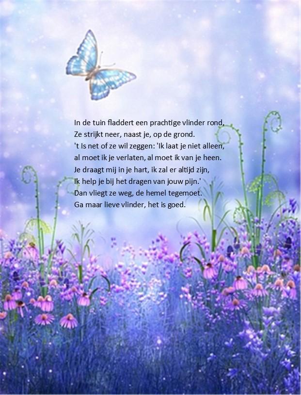 gedicht over een vlinder